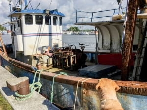 Dänischer Rost - Rostiges Boot